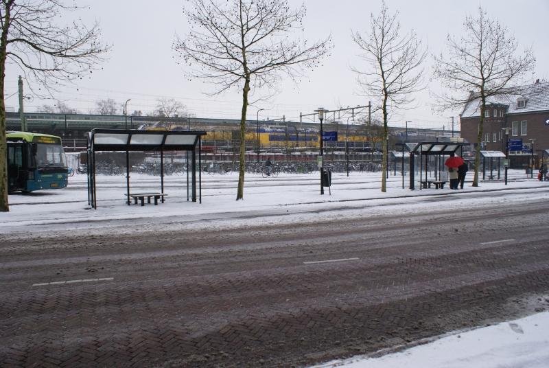 DDPC 2009-12-20 081